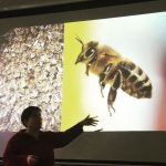 Dr. Melanie von Orlow lecturing on bee swarm behaviour