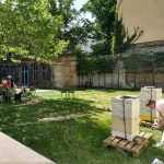 Urban bee keeper Erika Mayr and TU Berlin - CHORA Conscious City students working in the Aedes Garden